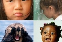 Social/Emotional / In the push for accelerating academic achievement and boosting standardized test scores, we must not neglect the importance of nurturing the social/emotional development of children. Without this, all the rest is virtually useless. / by Marti Anderson