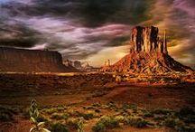 Desert / Desert beauty / by Scott Sanders