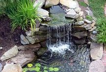 Fountains / by Scott Sanders