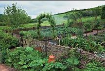 Garden: Fences