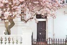 Opening Doors / Opening doors since 1856