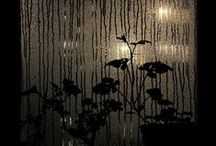 Photo : rain / photography | rain | nature