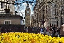 London in the Spring / Take a look at some lovely spring photos compiled from all around London!