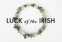 st patricks day / by natalie xanthakis