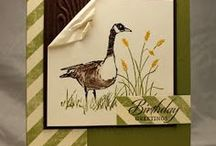 Birthday guy card ideas / by Cathy Lay
