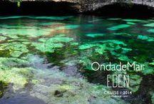 Playa del Carmen became our EDEN / by OndadeMar Swimwear