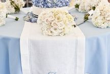 Wedding Party with Baby Blue Accents