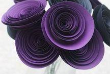 Purple Passions! / Everything PURPLE