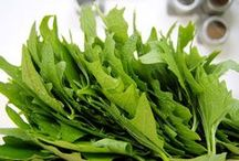 wilde Rezepte   foraging recipes / Köstliches mit essbaren Wildpflanzen (Beeren und Kräuter)  #foraging