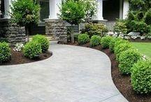 Curb Appeal & Garden