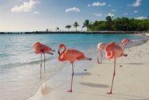 Travel ~ Caribbean Islands