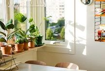 beautiful home! / Inspiration for beautifying mah house