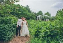 Weddings and Receptions at The Butterfly House / The Sophia M. Sachs Butterfly House in Chesterfield, MO (a suburb of St. Louis, MO) hosts outdoor wedding ceremonies and receptions for up to 150 people in the native butterfly garden. This board showcases pictures of the unique space.