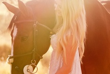 Equestrian Photography / The bond and harmony of horse and rider captured forever. Beautiful, isn't it? / by Natalie Arellano