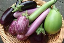 Veggie Love / We are loving the freshness that these vegetables are sending our way. From tomatillos to eggplants to pumpkins, we've got you covered!