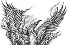 Phoenix drawings
