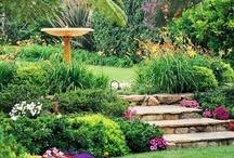 Garden Ideas / by Saundra Atchison