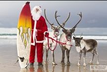 Christmas / Experience a coastal Christmas in magical St Ives.  Combine cosy festively decorated accommodation with stunning views with the beautiful Christmas lights of Cornwall. It can't but be perfect.  www.carbisbayholidays.co.uk