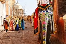 Colorful India / India / by Sajida Younus