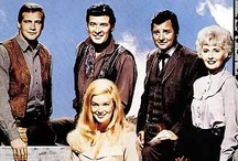 The Big Valley / #TheBigValley #TV #BarbaraStanwyk #RichardLong #PeterBreck #LeeMajors #LindaEvans #westerns / by MerLot HuEs