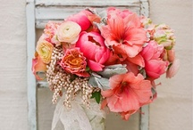 Wedding Flowers / by Amanda Woods