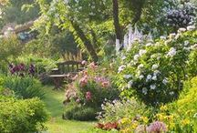 Backyard Oasis / Inspiration for a mini-escape.