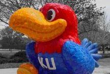 KU Jayhawks / Love the Jayhawks!!!!! / by Sarah Petty
