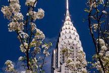 My New York City / New York City