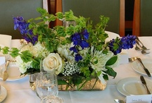 Centerpieces 1 / A variety of short, tall, and medium height centerpieces for weddings, showers, parties, and other special events.