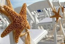 Beach Weddings / by Something Floral™