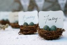 Bird Themed Weddings / A variety of bird themed ideas and inspiration for weddings, bridal showers, parties, etc.