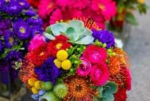 Multicolor Weddings / A variety of multi-color and vibrant color wedding and event ideas. #multi #color #wedding #ideas #inspiration #palette #theme / by Something Floral™