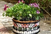 Container Gardening ideas / by Roberta Belwood