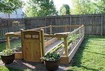 Gettin my gardening on.. / by Amanda Dennis