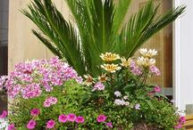 Garden Party / by Pamela Voges