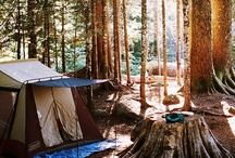 Camping & Glamping / by Kelli Bates Jensen