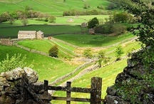 Yorkshire / by sharon parfett