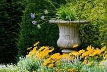 Boxwood and Formal Gardens / I love the classic lines and symmetry of the formal garden style.