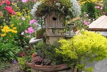 Bird Homes / by Diane Reheis