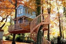 Treehouses of the World / Who doesn't want to live amongst the treetops? I've been obsessed with treehouses ever since my dad built me one as a child. Someday I hope to have an adult treehouse. This is a collection of treehouses from around the world. Photos, ideas, masterpieces, inspiration, and DIY instructions. Treedom! :)