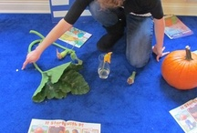 Preschool Science In The Classroom / by Karen Alexander