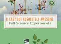 Science Experiments / Easy Science experiments are a cool and fun learning tool for kids, for middle school, for preschool and for teens.  STEM is crucial for learning reasoning and investigative skills.