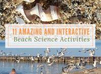 Beach Science