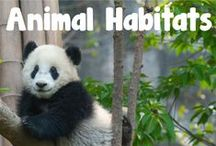 Animal Habitats Resources