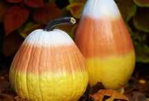 Thanksgiving, Fall, Autumn, Harvest . . . / by Denise