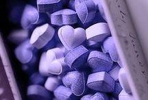 Purple, Morado, Pourpre