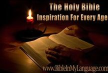 BIBLES OF THE WORLD / LANGUAGES