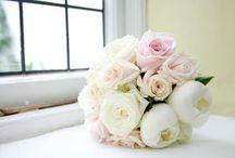 The Flowers. / by Melissa Rubin