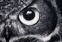 Owls / Owl Art I like