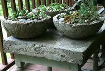 Garden Design / by Taunya Castillo